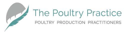 The Poultry Practice